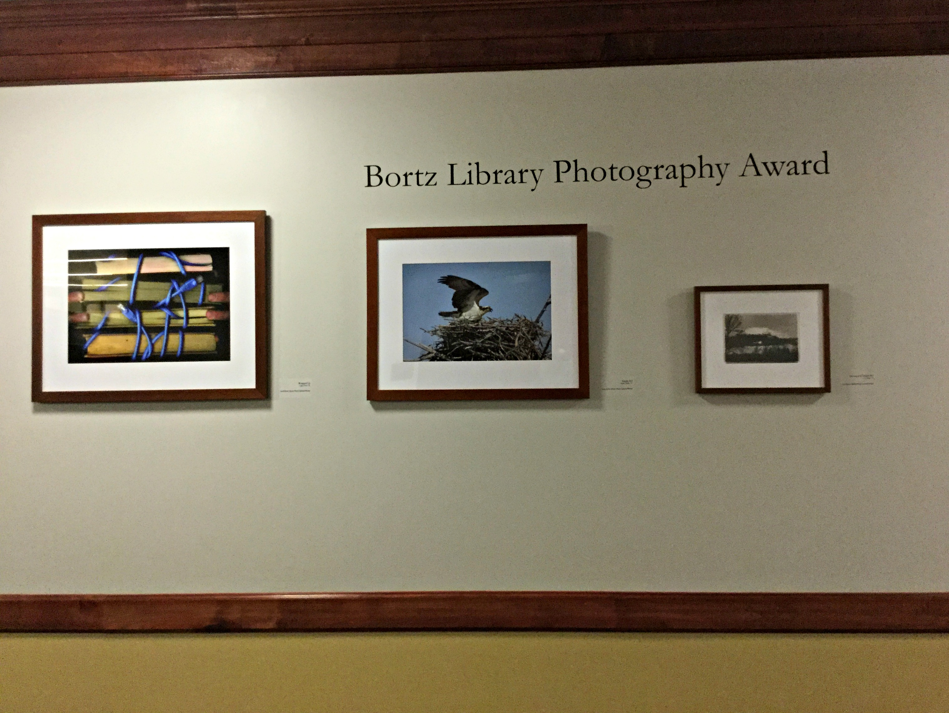 Student artwork hangs in the halls of the Library