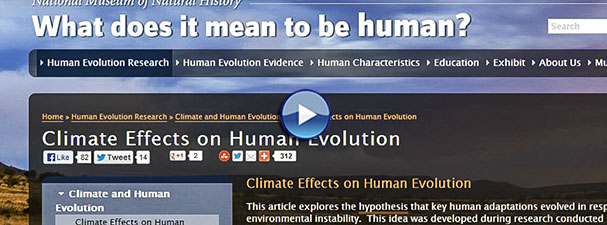 Image: Screenshot from tutorial with a website about human evolution (linked)