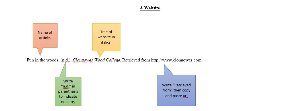 Citation example for website