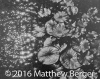 Photo_MatthewBerger