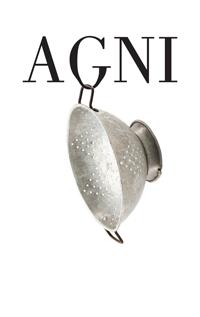 AGNI American short fiction