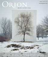 Orion cover showing photo artwork with barren trees and snow covered land