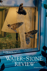 Water-capstone review cover with insects flying through window