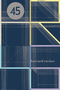 Harvard Review 45 cover with modern type artwork cover grid with lines of blue, violet, and yellow against grayish background