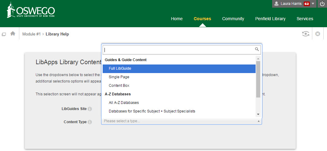 Screenshot of the LibGuides manual LTI options in Blackboard