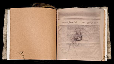 Interior of the book Cuts, Snarls, and Snags depicts hair on a piece of typed paper.