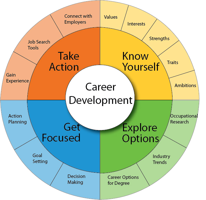 career development cycle