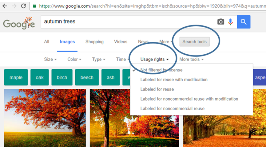 Google image search screen search with usage rights circled