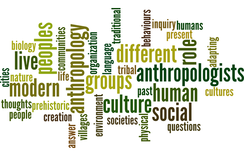 Anthropology wordle
