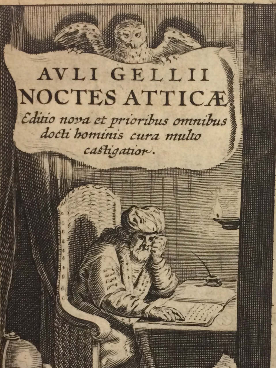 Image of a man reading a book with an owl over his head.