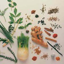 Complementary and Alternative Medicine Herbs Image
