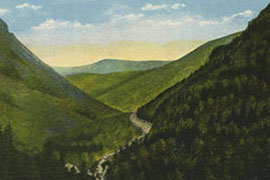 Museum of the White Mountains Collection