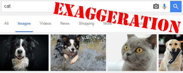 Google image results for CAT showing three dogs and a cat - an exaggeration of a real phenomenon
