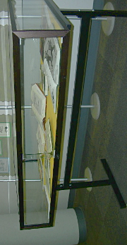 A wide view of the display case