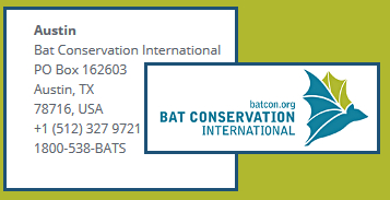 What is Bat Conservation International