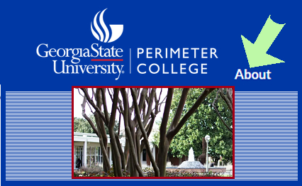 Scroll down to find Georgia State University Perimter College's author info