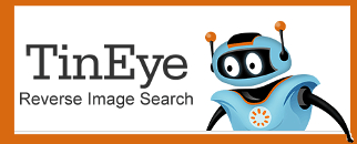Welcome to TinEye Images Searching