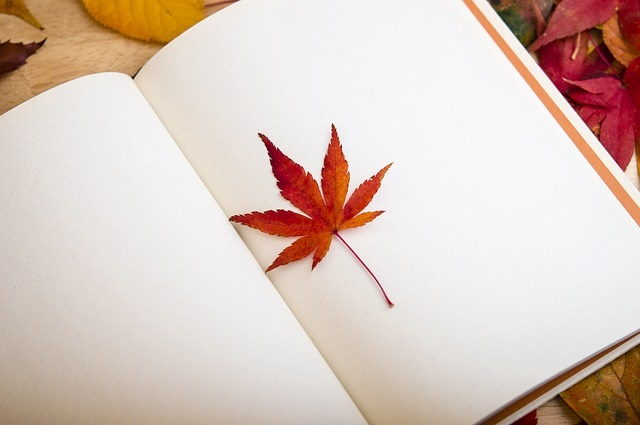 maple leaf in a book
