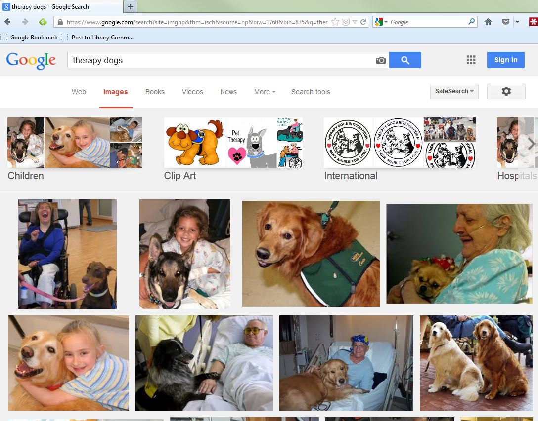 "Google Image search results for ""therapy dogs"" visual example"