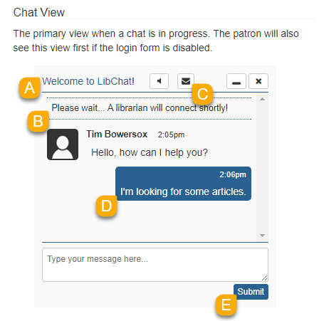 Example of the Chat View