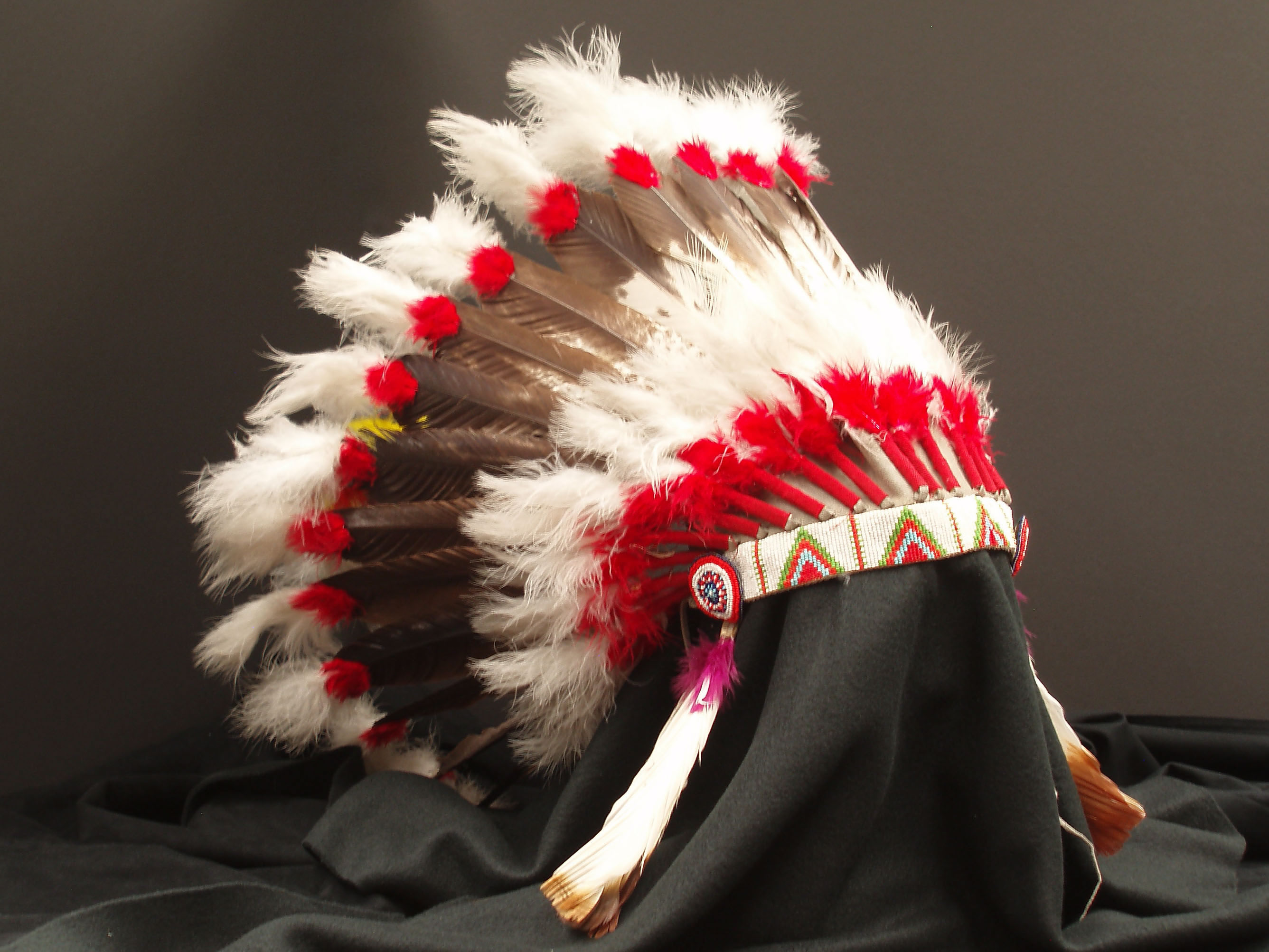 photograph of Blackfeet Headdress, white, brown and red feathers