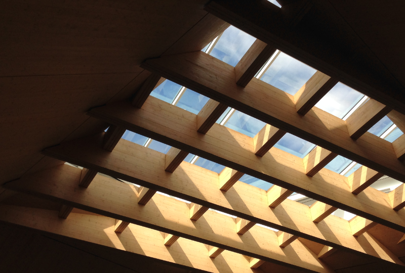 Skylight in the Hive