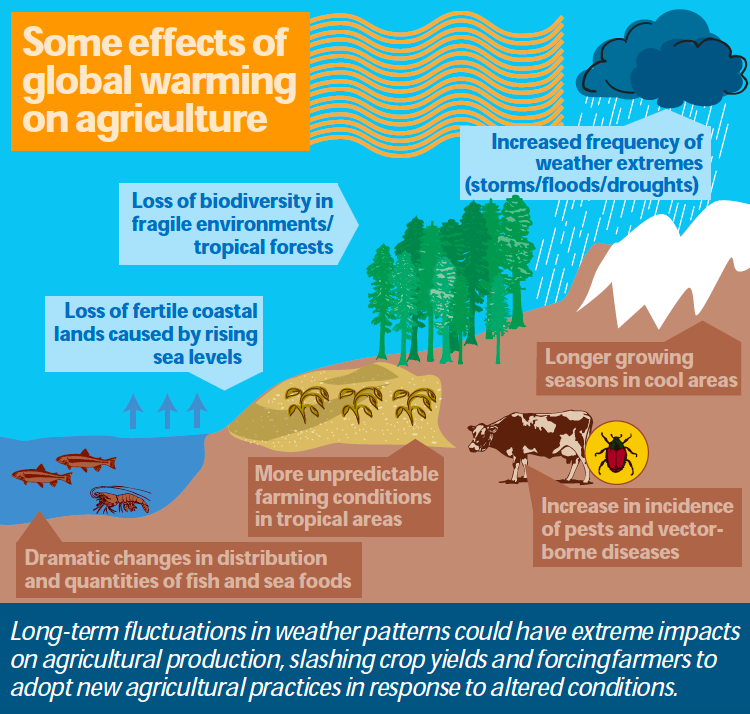 Impact on Agriculture - Climate Change and Agriculture ...