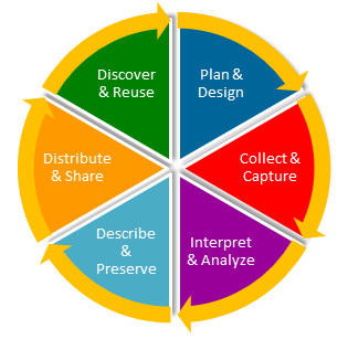 image of the data cycle