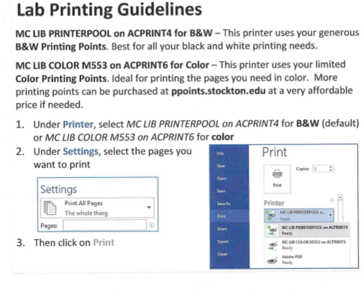 Lab Printing Guidelines