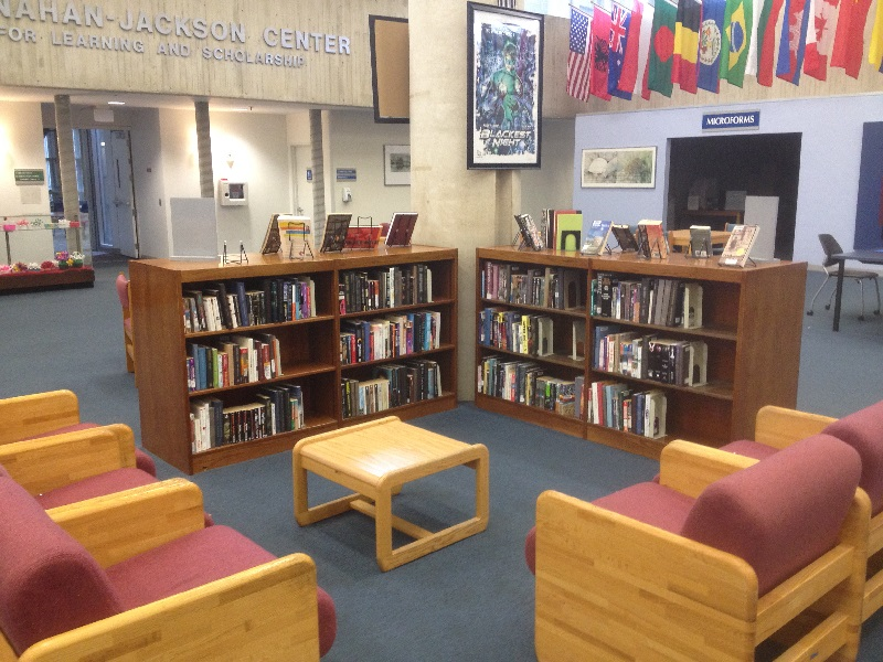 Photo of the leisure reading collection