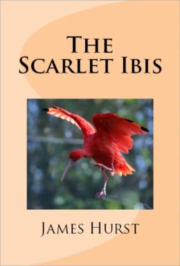 Essay on the scarlet ibis themes