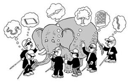 Multiple Perspectives: What you see depends on which part of the elephant you're examining