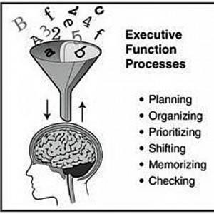 Strengthening Executive Function >> Executive Functioning Casd 7317x Cbse 7685t Introduction