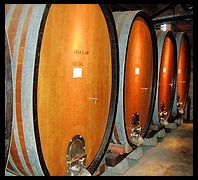 picture of wine casks