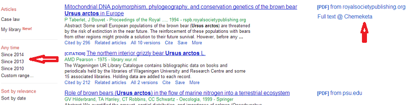 picture of google scholar search results screen