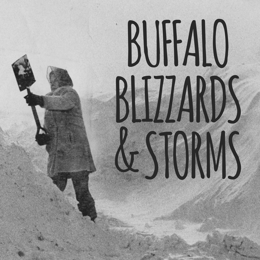 Buffalo Blizzards and Storms