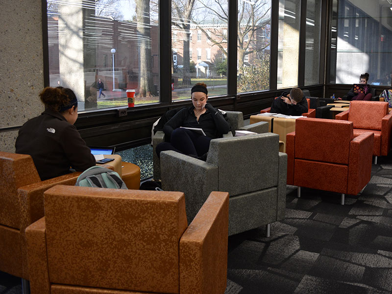 individual study area