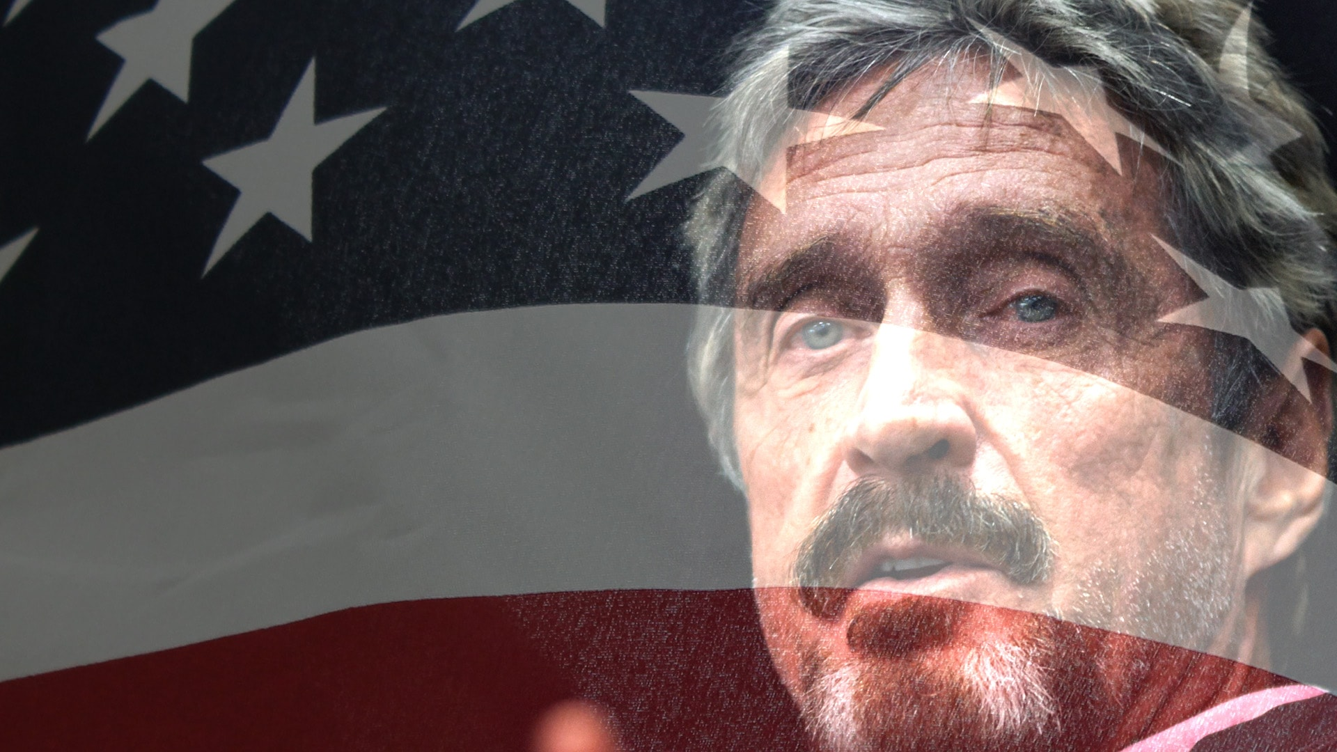 McAfee and Libertarian Party Appearances