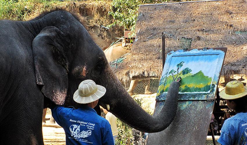 Painting elephant, Thailand