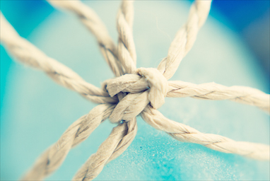 Entangling Alliances