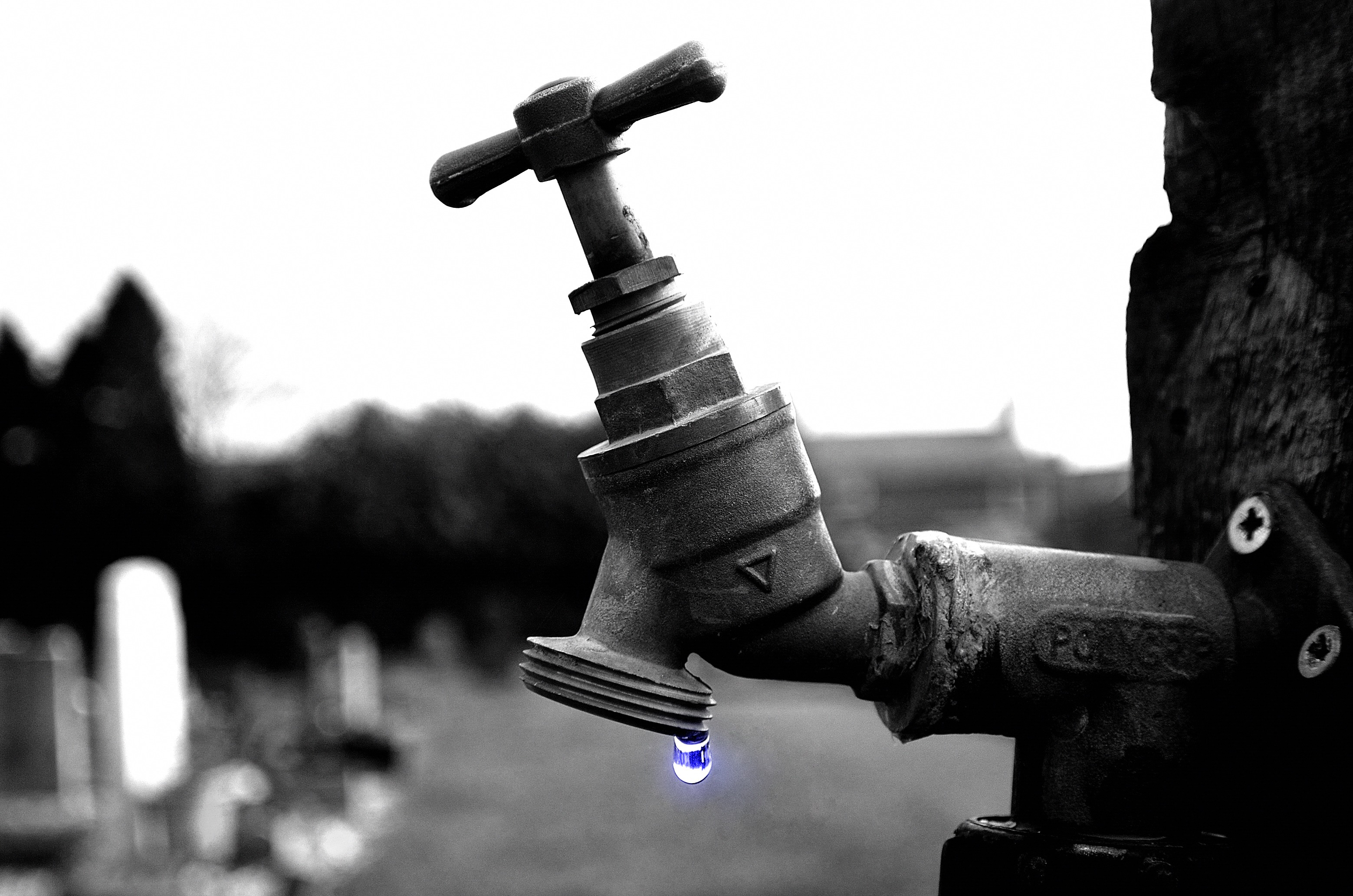 Water shortage? Thank the government.
