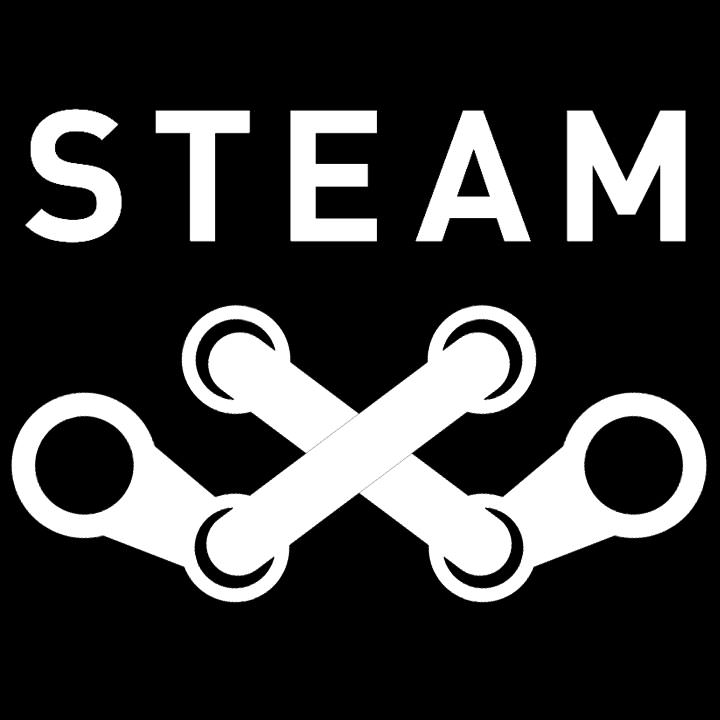 Steam Pirate Flag