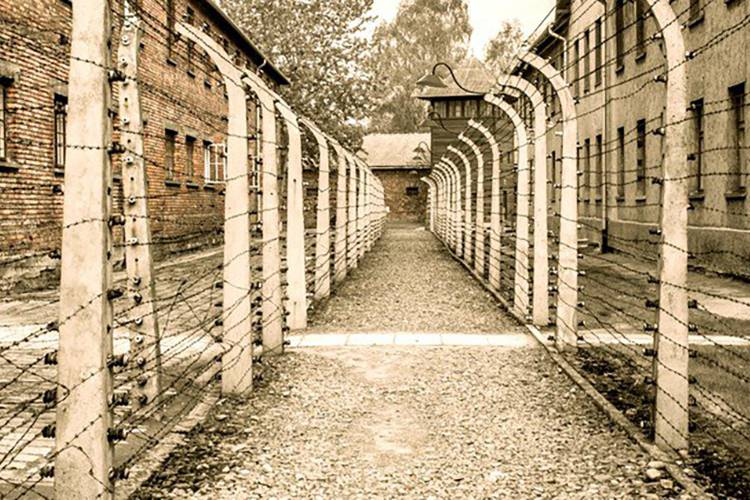 Why the Holocaust Should Matter to You