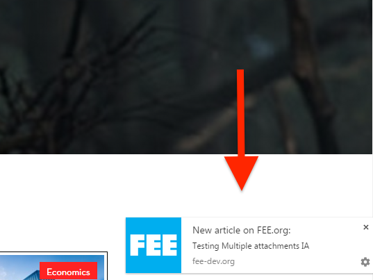 How FEE.org implemented Push Notifications for Web Browsers