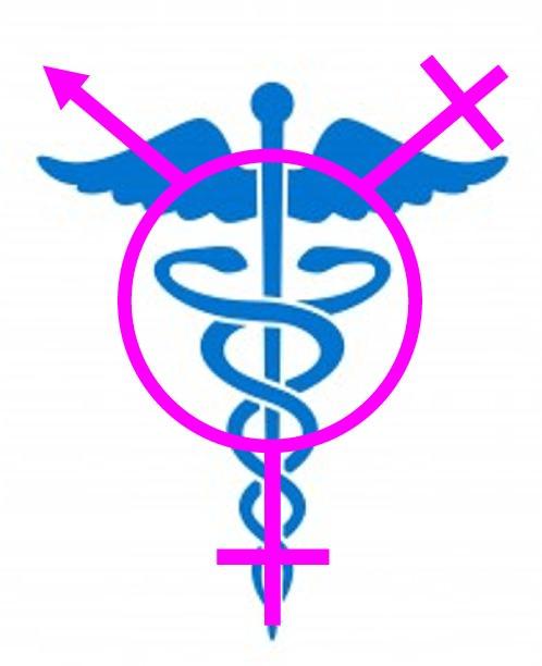 Reflections on Transgender Medical Care
