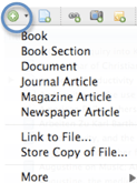 Screenshot of the New Item icon and list of reference types: Book, Book Section, Document, Journal Article, etc.