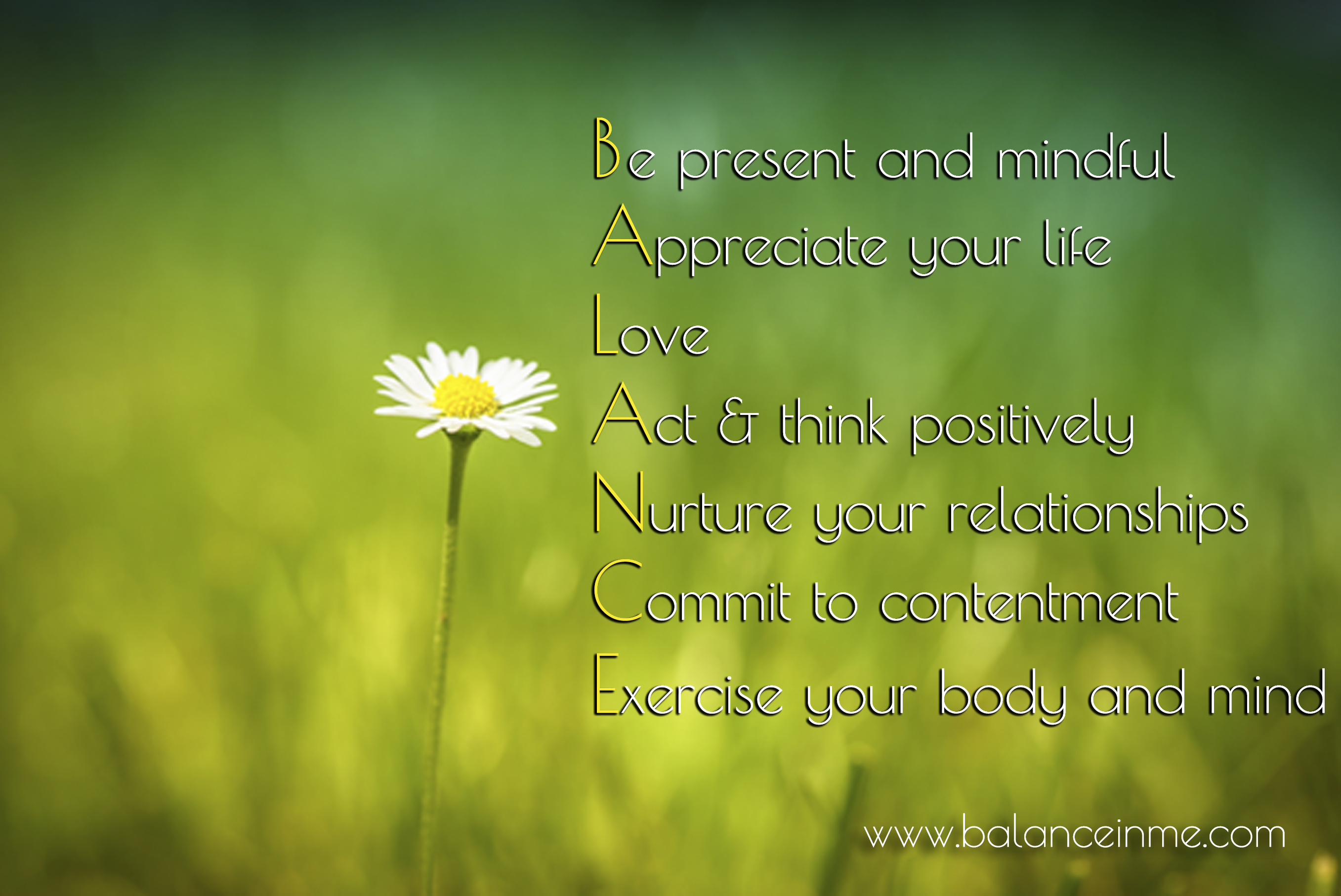 Balanced Life Quotes Balanced Life  Sh