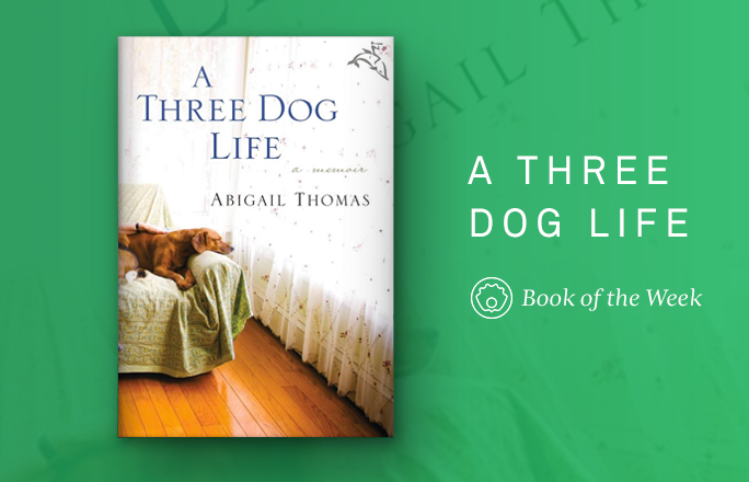 A Three Dog Life by Abigail Thomas | 9 Great Summer Reads For Animal Lovers | Life360 Tips