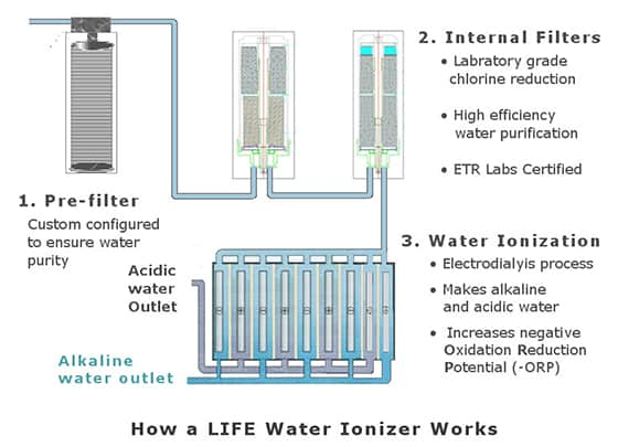 How Water Ionizers Work The Process Of Electrodialysis
