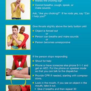 15-1027 Heartsaver Adult Choking Poster